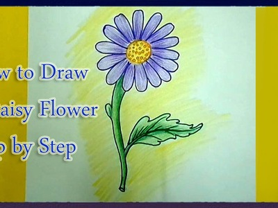 How to Draw a Daisy Flower Step by Step