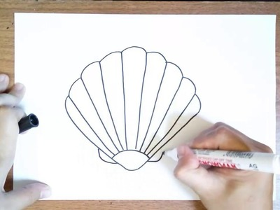 How to Draw a Sea Shell for Kids