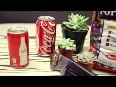DIY Coke can succulent planter