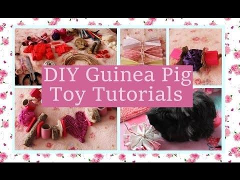Toy Parts Haul & DIY Guinea Pig Toy Tutorials