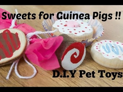 Sweets for Guinea Pigs!! *5 D.I.Y Pet Toys*