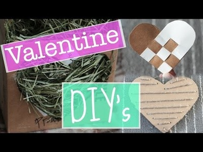 DIY Rabbit Valentines Day Toys! How to Make Homemade Rabbit Toys - Collab with SarahBunny
