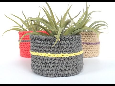 Episode #1 - How to Crochet a Bowl for a Large Air Plant