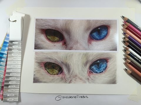 Timelapse - How to draw a Cats Eyes
