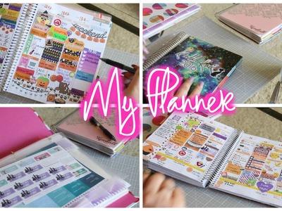 How I Use My Planner, Sticker Organizaton, & Printable Stickers