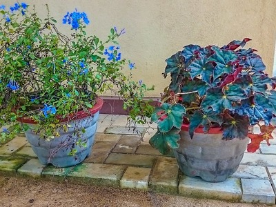 How to make cement flower pots