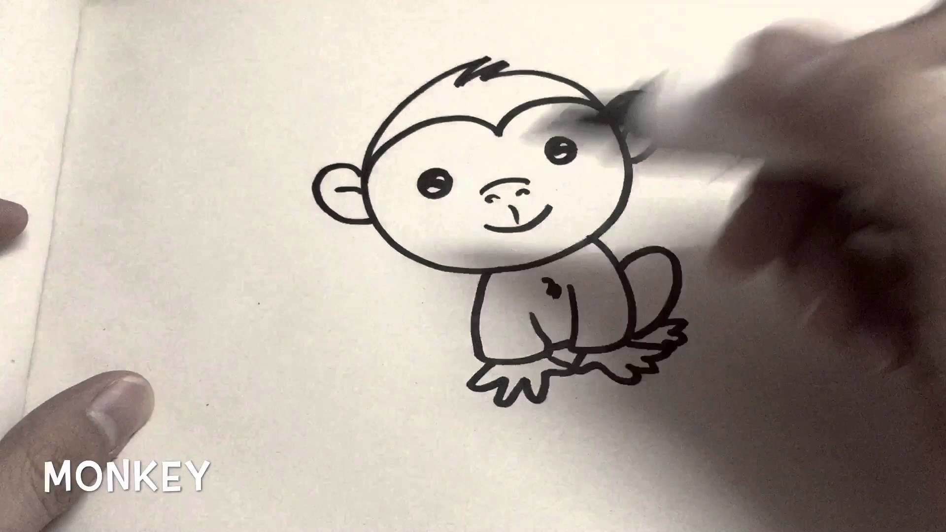 How to draw Monkey, armadillotv