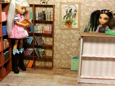 How to Make a Doll Book Store