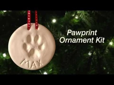 How to Make a Pawprint Ornament | DrsFosterSmith.com