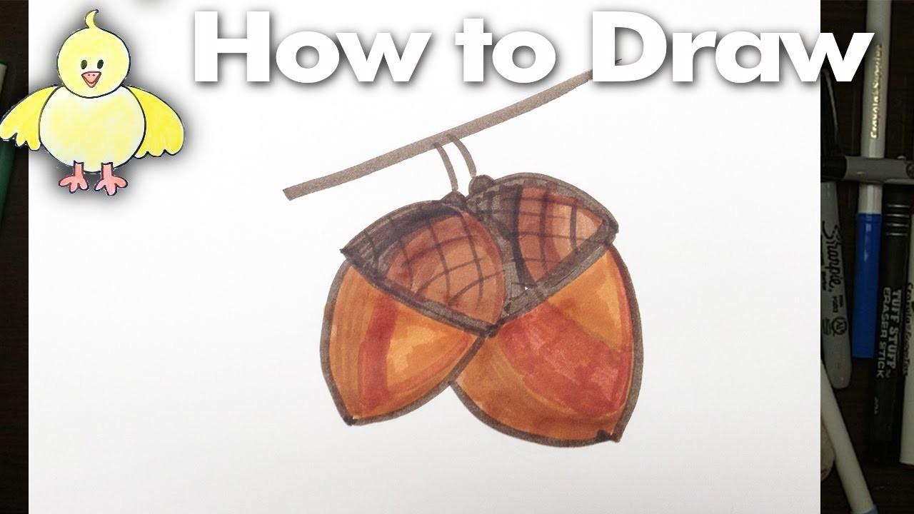 How to Draw Easy Acorns