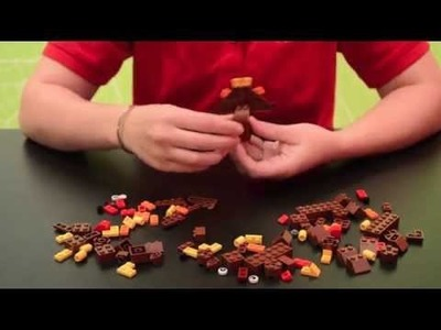 How to build a LEGO® Turkey