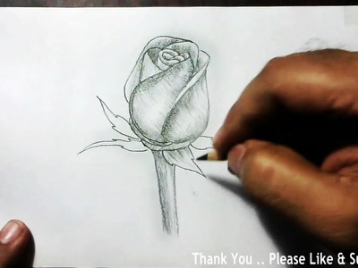 How to Draw a Beautiful Rose using charcoal pencil