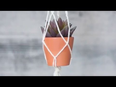 How To: Easy Macrame Plant Holder