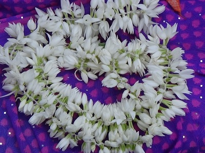 How to make jasmine flower garland easy method without needle from Latha Channel