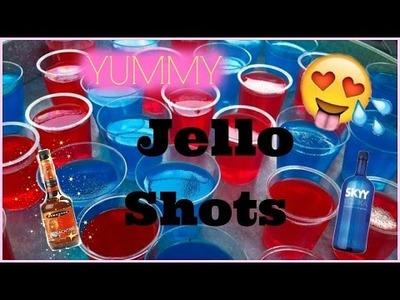 DIY Jello Shots| Yum Yum Yum