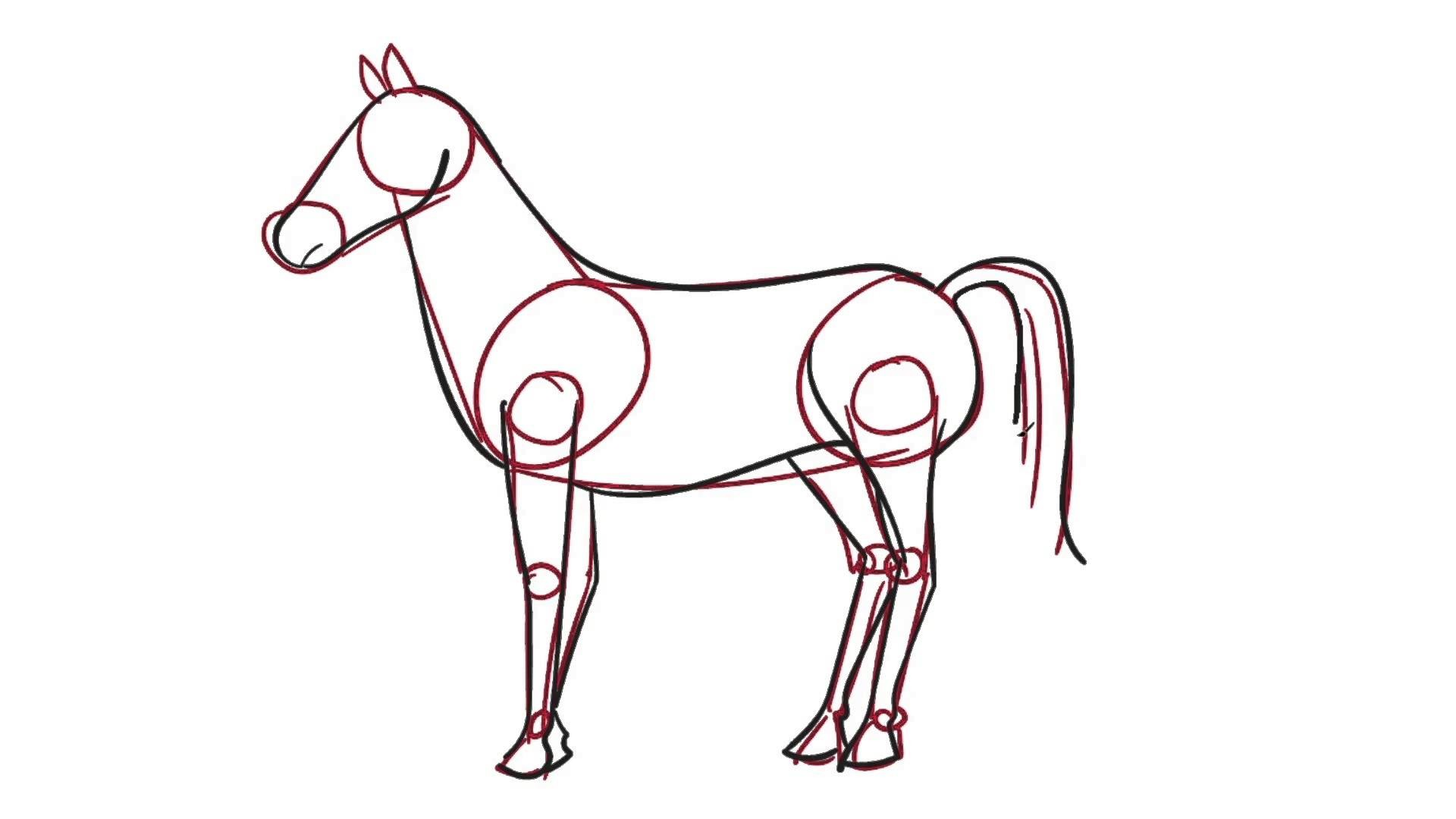 07 Learn how to draw a Horse the easy way for kids