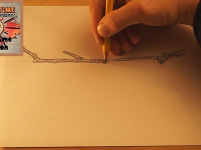 How to Draw a Twig