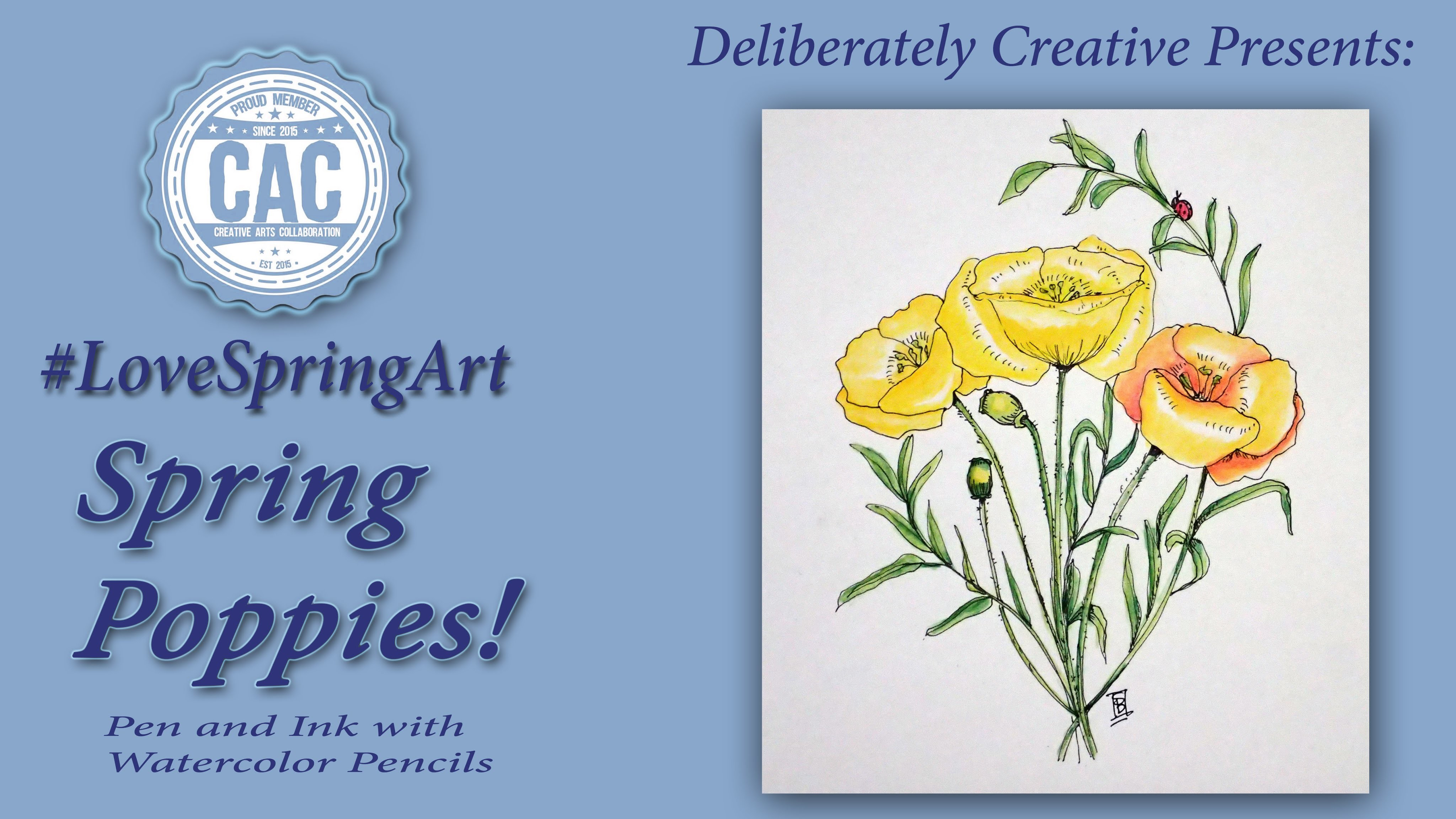 Learn How to Draw Tutorial,  Pen and Ink Poppies #LoveSpringArt