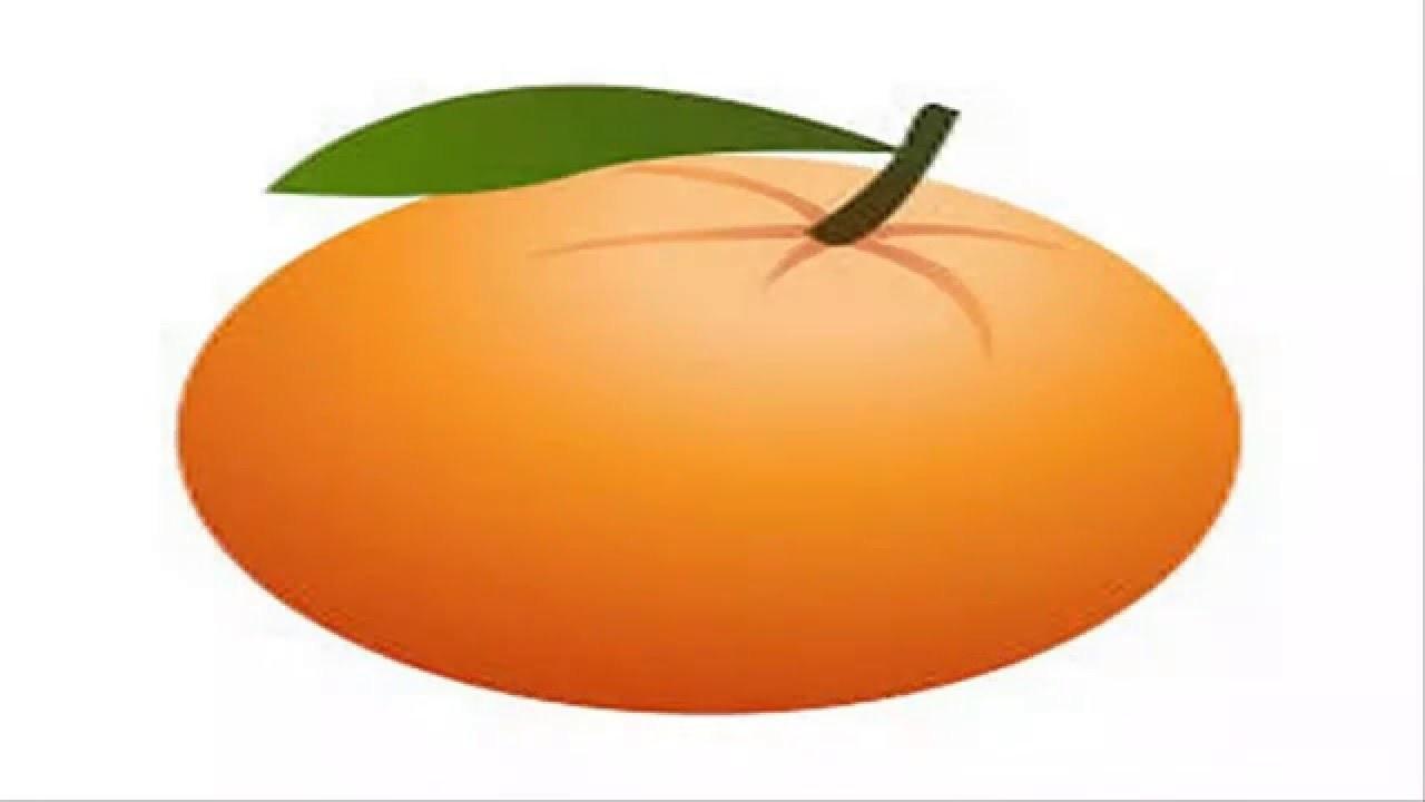How To Draw View Orange Cartoon