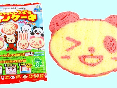 Puchitto Doobutsu DIY Animal Panda Shape Pancake Japanese Candy Making Kit!