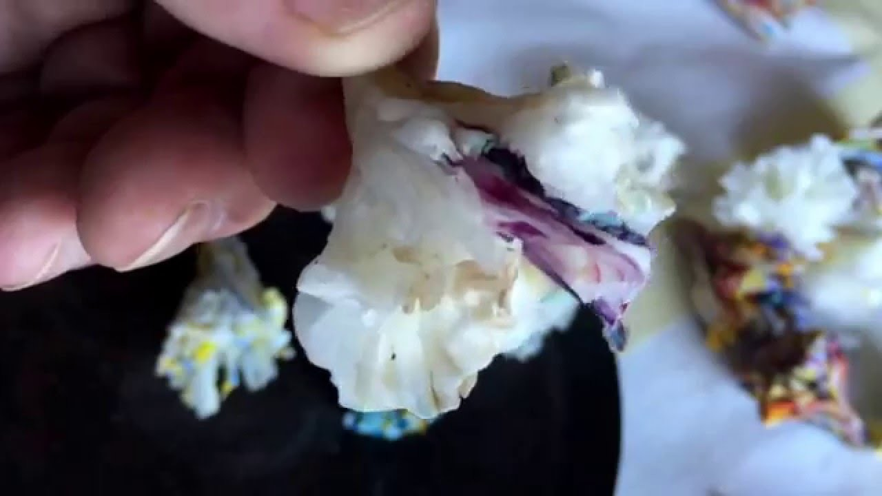 How to make encaustic flowers using leftover beeswax