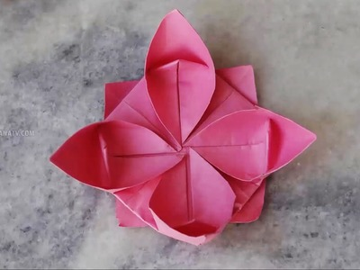 make easy paper crafts: origami Man Didier 3D | 300x400