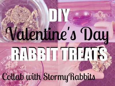 DIY Valentine's Day Treat for Rabbits ♥Collab with StormyRabbits♥