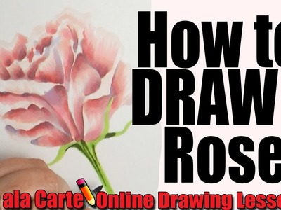 How to draw a Rose (Advanced)