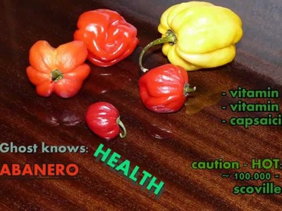 How to handle and cut habanero peppers ☻ Eine Habanero kleinschneiden