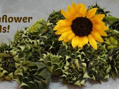 How to Use Sunflower Buds as Artichoke Hearts