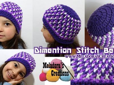 Dimention Beanie - Crochet Tutorial ( Baby - Adult Sizes )