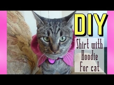 DIY Shirt with Hoodie for Cat