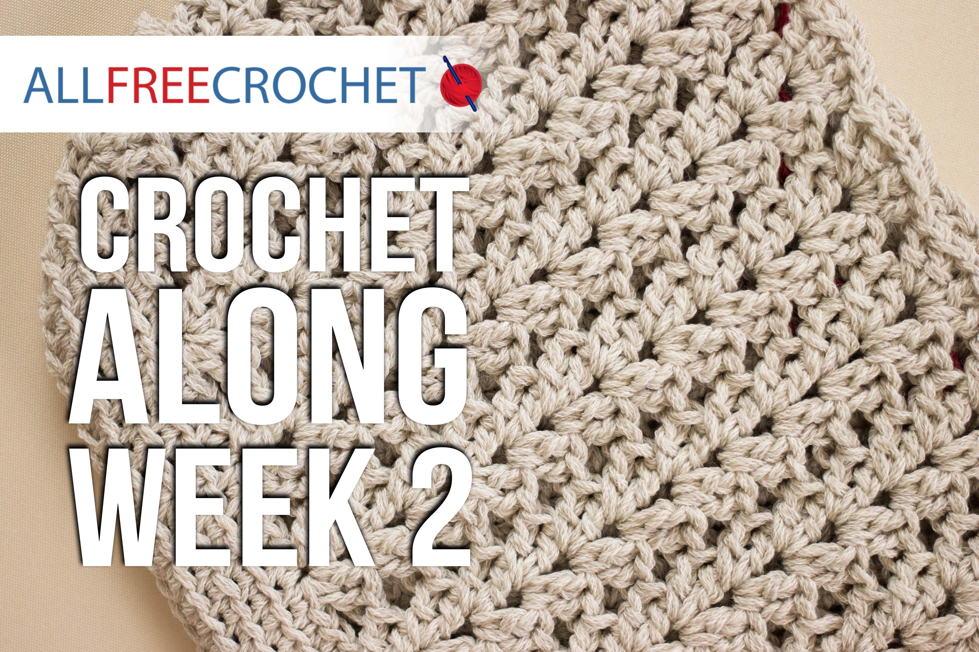 Crochet Along: Week 2 - Sides of the Bag