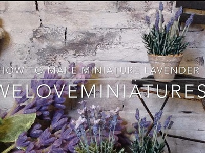 How to make miniature lavender