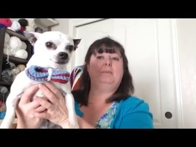 How to Crochet a Bowtie for your Dog