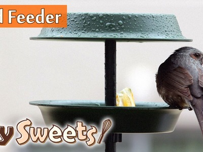How to make bird feeder