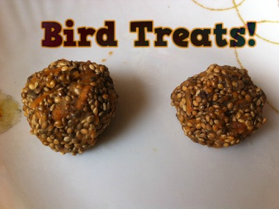 How to make easy Homemade Bird Food.treats| Bird food for budgies, cockateils, and conures!
