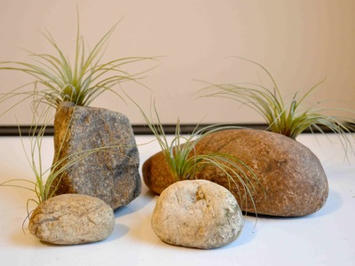 How To Make Stone Air Plant Holders With Polymer Clay