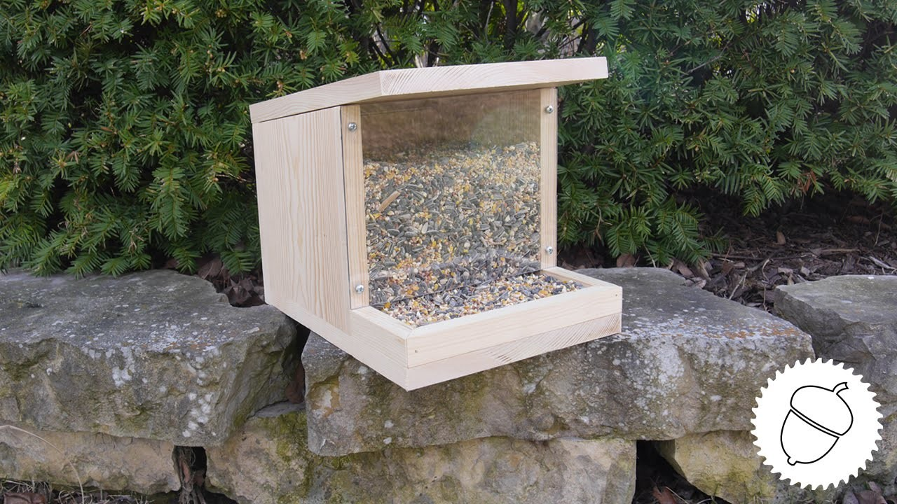 How to Make a Bird Feeder   Great Spring Project!