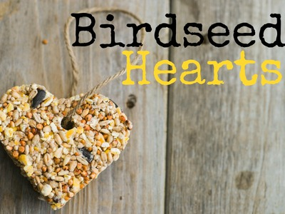 How to Make Birdseed Hearts
