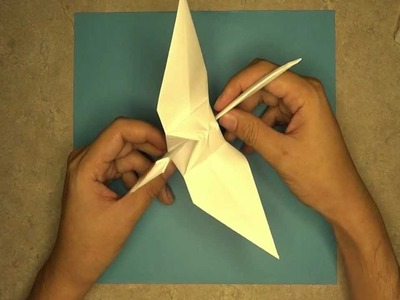How to make a Crane: Mr.Origami, Lesson 1