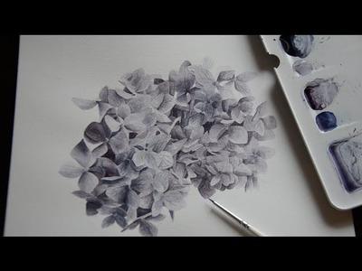 Painting watercolor hydrangeas