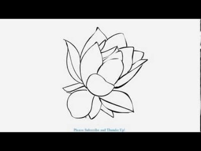 How to Draw a Beautiful Lotus Flower