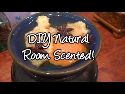 D.I.Y Natural Room Scented (Orange Peels) !
