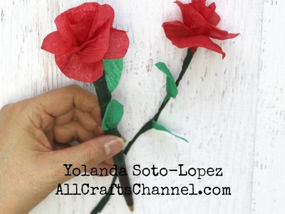 Easy Crepe Paper Roses