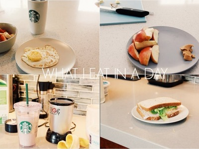 What I Eat In a Day!   ZaraForever