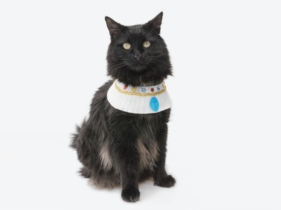 Sew a Pet Costume - Ancient Egyptian Necklace