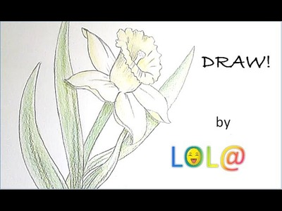 {Tuto #6} How to Draw a Daffodil