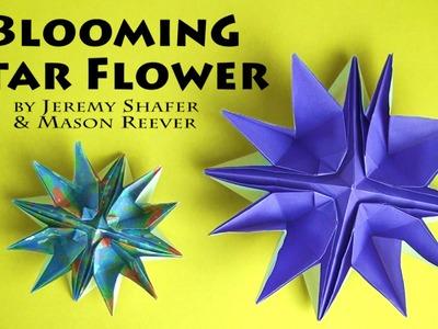 Blooming Star Flower