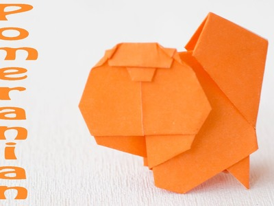 Pomeranian dog. Paper dog origami